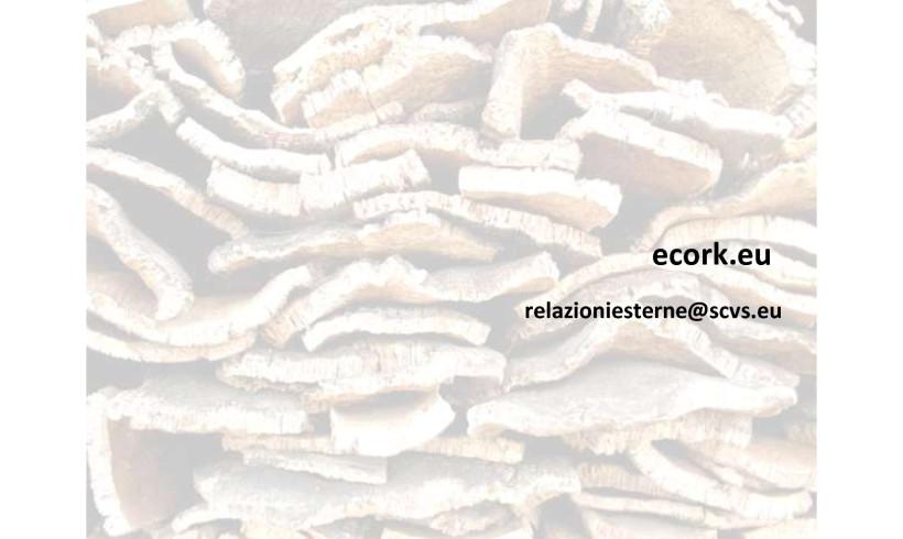 L'economia circolare nell'assorbimento